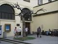 Image for Tree Statue - Prague, Czech Republic