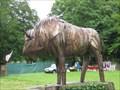 Image for Bison - Rhug Organic Farm, Corwen, North Wales, UK