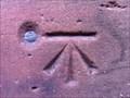 Image for Cut Benchmark with Bolt on Shrewsbury Abbey in Shrewsbury, Shropshire