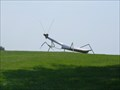 Image for Giant Insect Praying Mantis - rural Newton, Iowa