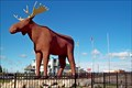 Image for Mac, the World's Largest Moose - Moose Jaw, SK