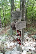 Image for AT Intersection To Devil's Marbleyard, Nr Snowden, VA