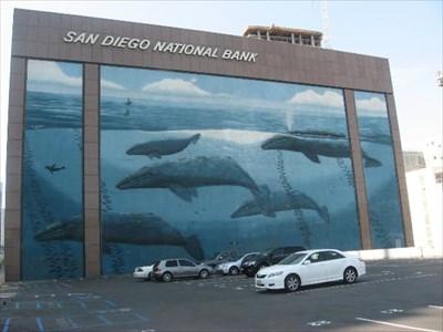 Whale Mural San Diego CA Murals on Waymarkingcom
