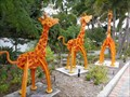 Image for Giraffe Family - Museum of Whimsy - Sarasota, Florida, USA.