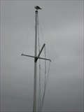 Image for Pier 39 Flag Pole -  San Francisco, CA
