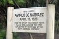 Image for Panfilo de Narvaez