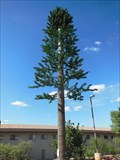 Image for Windemere Hotel and Conference Center's Pine Tree Cell Phone  Tower - Sierra Vista, AZ