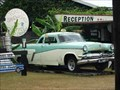 Image for Daintree Village Taxi - Daintree Village - QLD - Australia