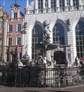 Image for Neptune's Fountain, Gdansk
