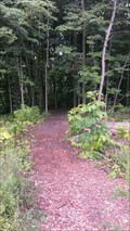 Image for Collins Bay Mountain Bike Trail - Kingston, Ontario