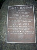 Image for LAST -- Indian of Chester County - Kennett Square, PA