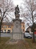 Image for Panna Marie Immaculata / Virgin Mary Immaculata, (Zbraslavice, CZ)