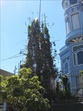 Image for Ron Henggeler's Teepee Tower - San Francisco, CA