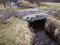 Image for The Fountain Clapper Bridge, Cowsic Valley, Princetown Dartmoor