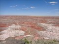 Image for Painted Dessert - Satellite Oddity - Navajo, Arizona, USA.