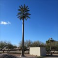 Image for Congregational Church of the Valley Palm Cell Tower - Chandler, AZ