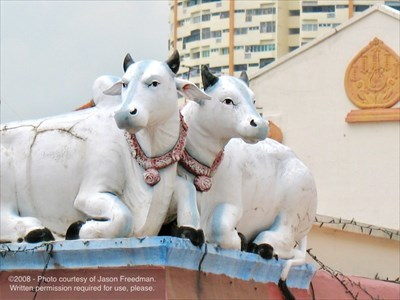 Two cow sculptures of the Sri Mariamman Temple - Singapore