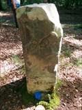 Image for Borne 96, forêt de Fontainebleau - France