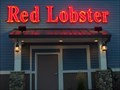 Image for Red Lobster - Clay, New York
