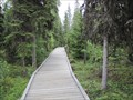 Image for K'beq Interpretive Site Boardwalk - Cooper Landing, Alaska