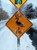 Image for Goose Xing North Lane - Grand Haven, Michigan