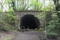 Image for Brinnington Tunnel - Portwood, UK