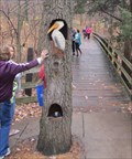 Image for Dog and Pelican at Starved Rock State Park in Utica, Illinois