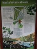Image for Madja botanical walk -  - Queensland, Australia