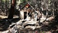 Image for Abandoned Logging Camp Cabin - Little Shasta, CA, USA