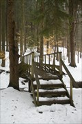 Image for Erie County Forestry Footbridge
