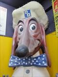 Image for Doggie Diner Head - Streetlights Records - San Jose, CA