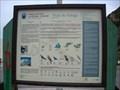 Image for Praia da Adraga Information Sign - Sintra, Portugal