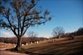 Image for Greenwood Cemetery – Atlanta, GA.