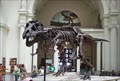 Image for Sue - Field Museum - Chicago, Illinois