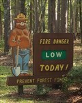 Image for Smokey Bear - Chapel Hill, North Carolina