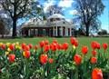 Image for Monticello - Charlottesville, VA