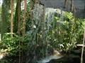 Image for Climatron Waterfalls - St. Louis, Missouri