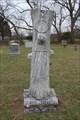 Image for Eugene Renfro - Dodd City Cemetery - Dodd City, TX