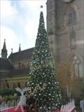 Image for St Martin's Square Christmas Tree - Birmingham, England, UK.