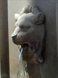 Image for Lionhead Fountain - Arlington, TX
