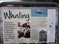 Image for Whaling - Victor Harbor, SA, Australia