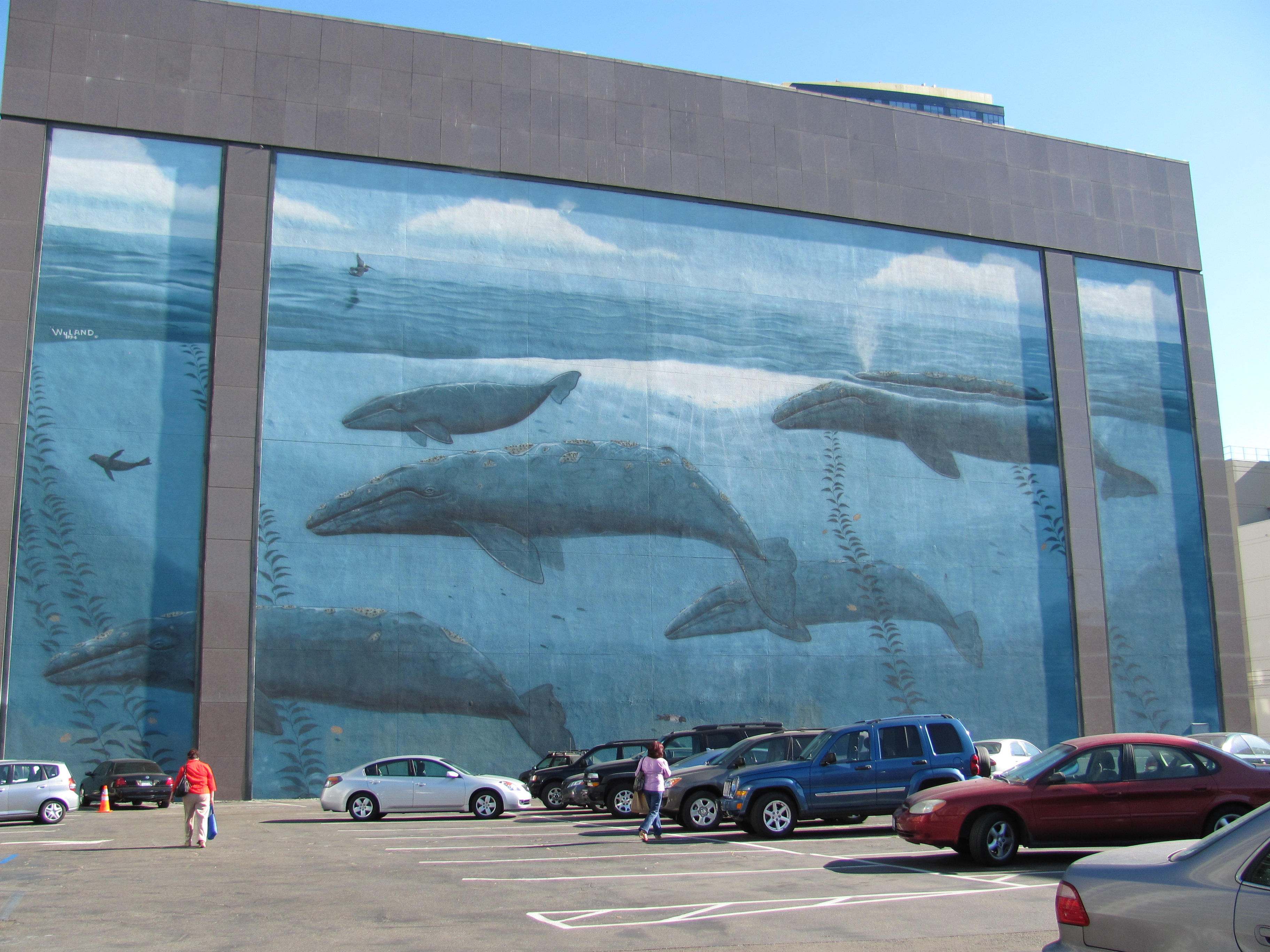 Whale Mural San Diego CA Image