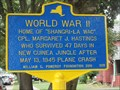 Image for World War II - Owego, NY