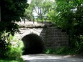Image for Old stone railroad bridge, Woodstock,IL