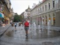 Image for Street Fountain, Oradea, Romania