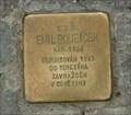Image for Emil Roubicek, Prague, CZ