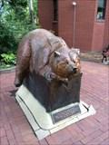 Image for Sleeping Bear - Golden, CO
