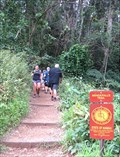 Image for Manoa Falls Trail - Honolulu, Oahu, HI