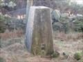 Image for O.S. Triangulation Pillar - Pitarris Hill, Angus