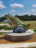 Image for Guadalupe Bass - Kerrville, TX